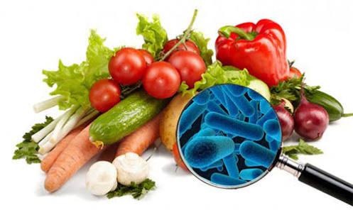 higiene, segurança alimentar