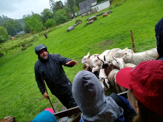 atividades rurais